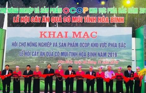 Hà Tĩnh: Tham gia Lễ hội cây ăn quả có múi tỉnh Hòa Bình, Hội chợ nông nghiệp và sản phẩm OCOP khu vực phía Bắc năm 2019
