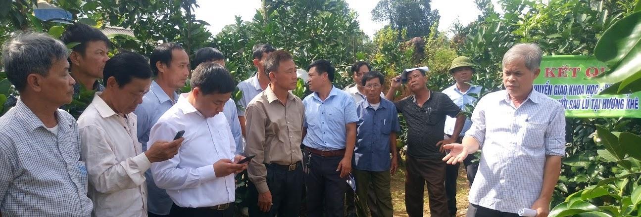 Khuyến nông Hà Tĩnh đẩy mạnh ứng dụng và chuyển giao tiến bộ khoa học- công nghệ vào sản xuất