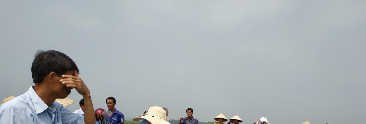 Tập huấn kỹ thuật canh tác lúa theo tiêu chuẩn hữu cơ