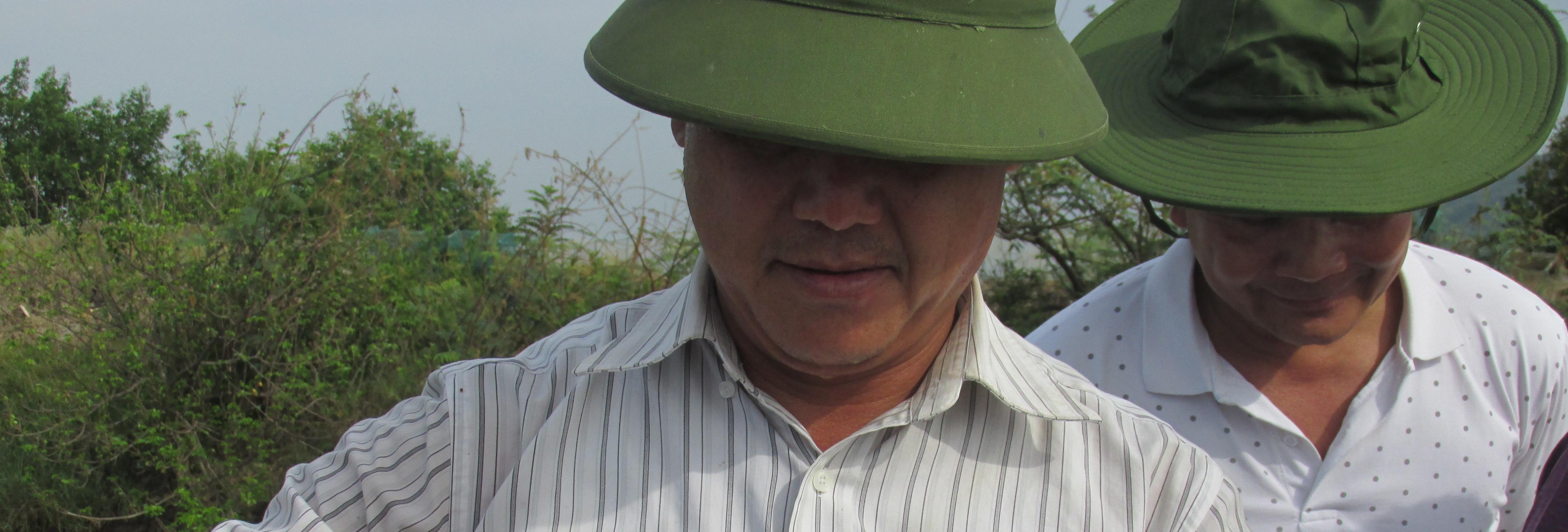 Hiệu quả của mô hình nuôi cua thâm canh sử dụng thức ăn công nghiệp