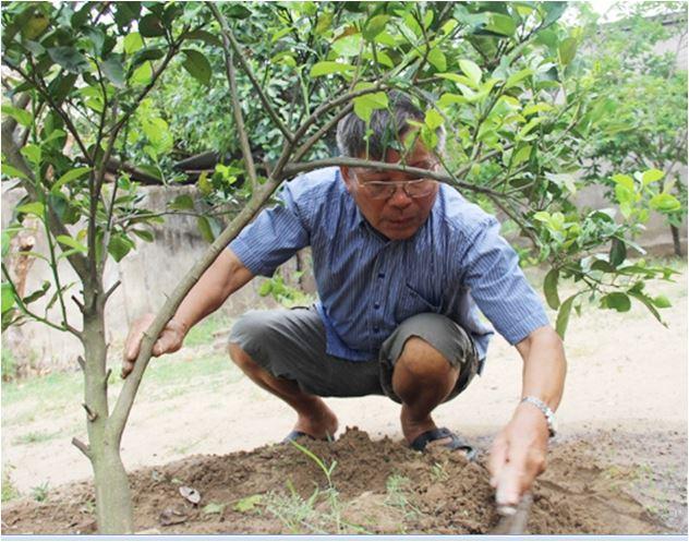 Tinh thần xây dựng Nông thôn mới của cựu chiến binh Đậu Đình Quế